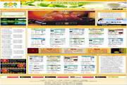 广告设计、制作公司网站模板下载