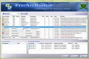 ProcNetMonitor