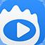 新浪视频下载软件(ViDown)专版